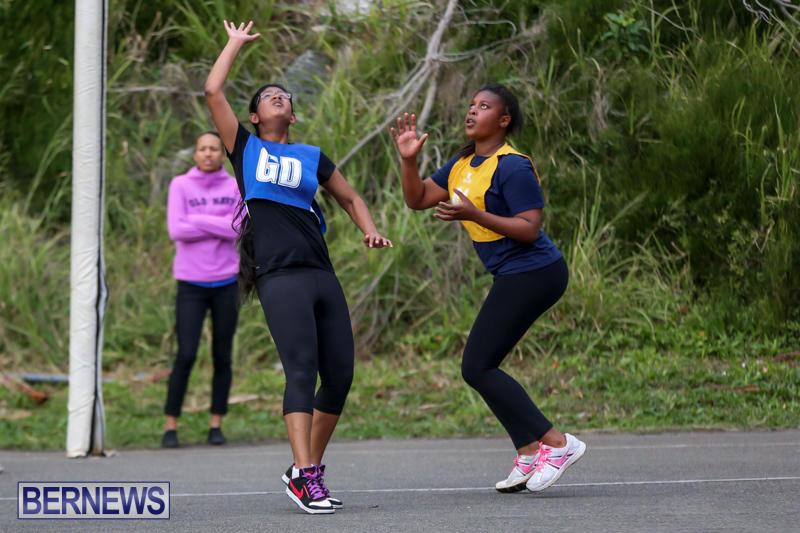 Netball-Bermuda-February-21-2015-13