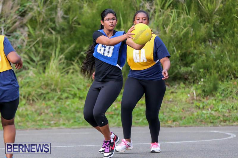 Netball-Bermuda-February-21-2015-16