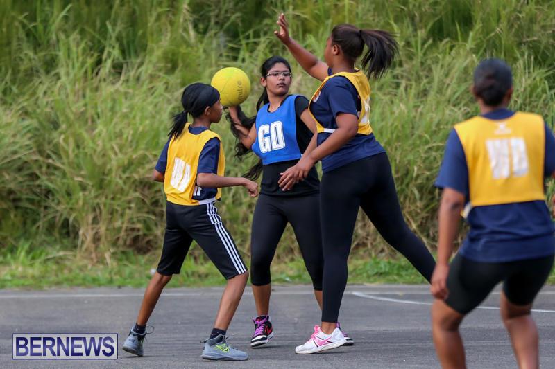 Netball-Bermuda-February-21-2015-18