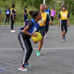 Netball Bermuda, February 21 2015-2