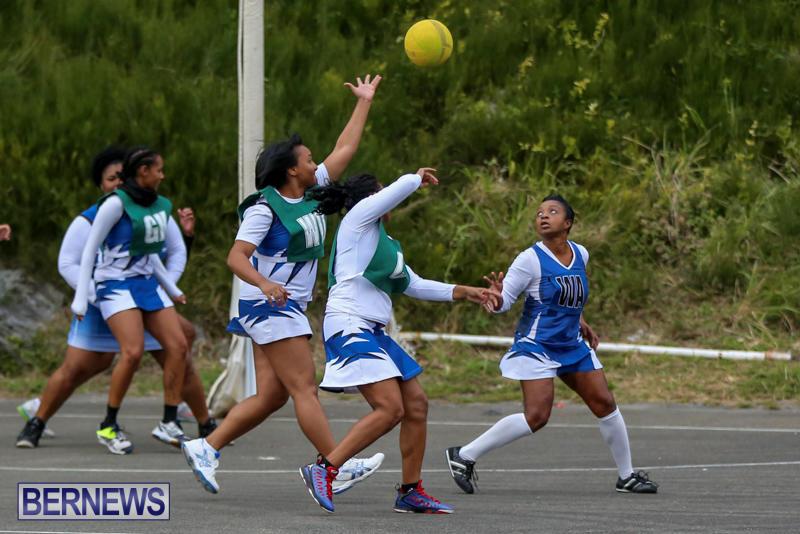 Netball-Bermuda-February-21-2015-20