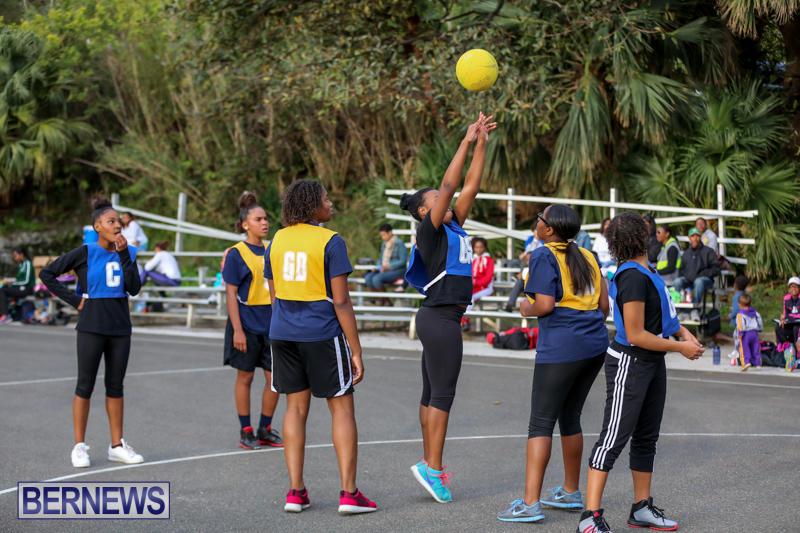 Netball-Bermuda-February-21-2015-3