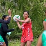Netball Bermuda, February 21 2015-35
