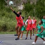Netball Bermuda, February 21 2015-48