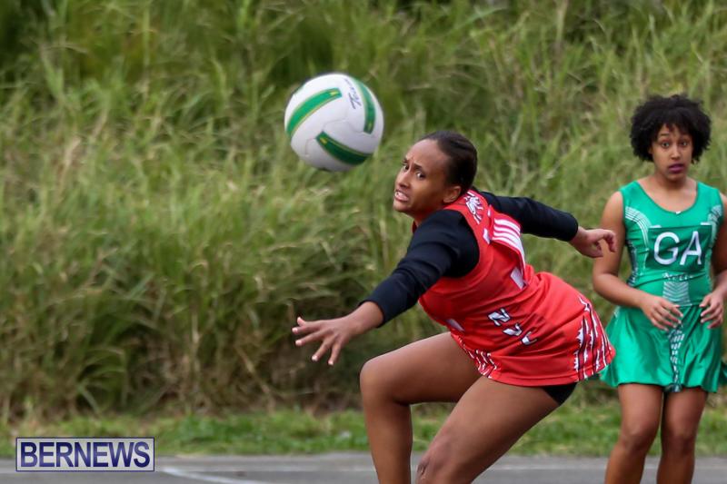 Netball-Bermuda-February-21-2015-49