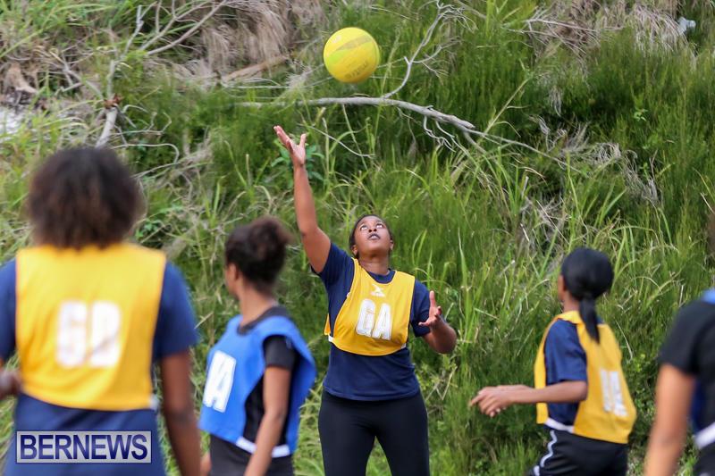 Netball-Bermuda-February-21-2015-5