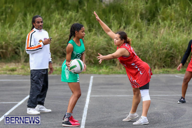 Netball-Bermuda-February-21-2015-51