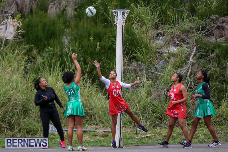 Netball-Bermuda-February-21-2015-65