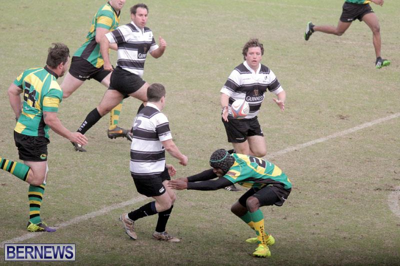 Rugby-2015-Feb-7-12