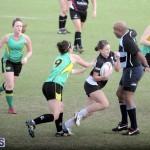 Rugby 2015-Feb-7 (2)