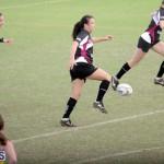Rugby 2015-Feb-7 (4)