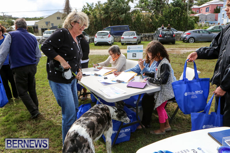 SPCA-Paws-To-The-Park-Bermuda-March-1-2015-101