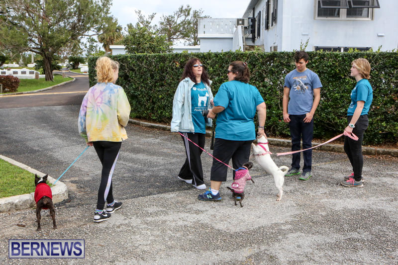 SPCA-Paws-To-The-Park-Bermuda-March-1-2015-13