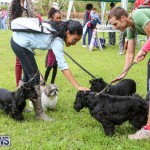 SPCA Paws To The Park Bermuda, March 1 2015-15