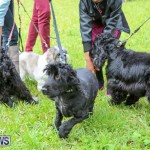 SPCA Paws To The Park Bermuda, March 1 2015-16