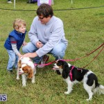 SPCA Paws To The Park Bermuda, March 1 2015-20