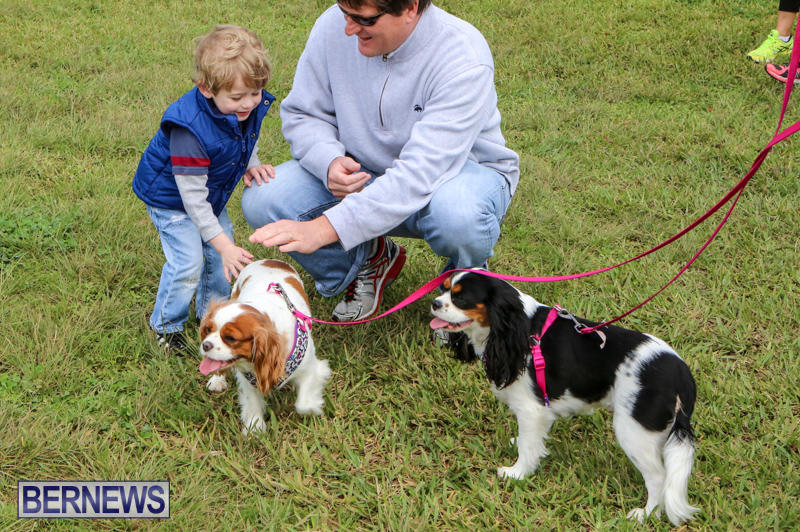 SPCA-Paws-To-The-Park-Bermuda-March-1-2015-21