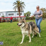 SPCA Paws To The Park Bermuda, March 1 2015-25