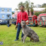 SPCA Paws To The Park Bermuda, March 1 2015-28
