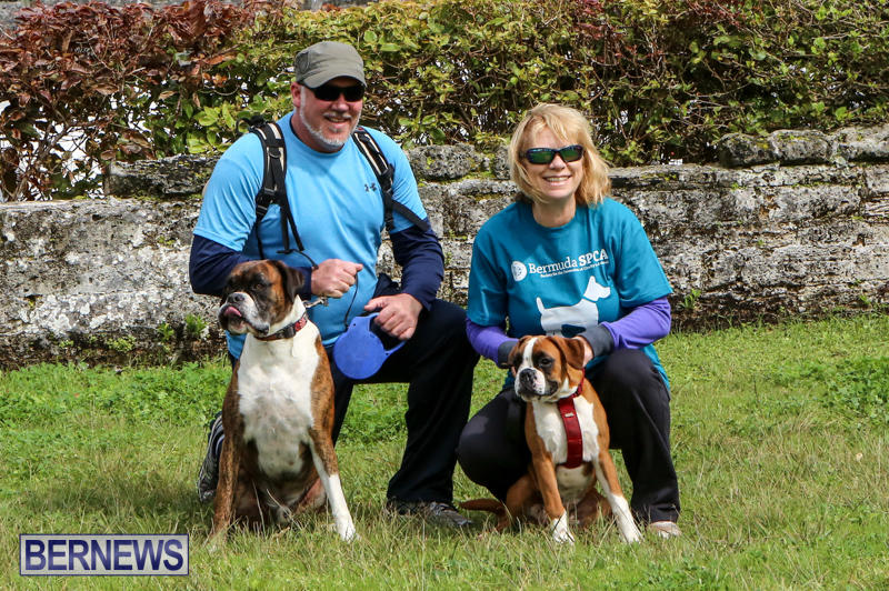 SPCA-Paws-To-The-Park-Bermuda-March-1-2015-35