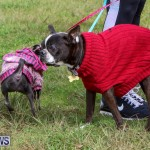 SPCA Paws To The Park Bermuda, March 1 2015-47