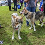 SPCA Paws To The Park Bermuda, March 1 2015-64