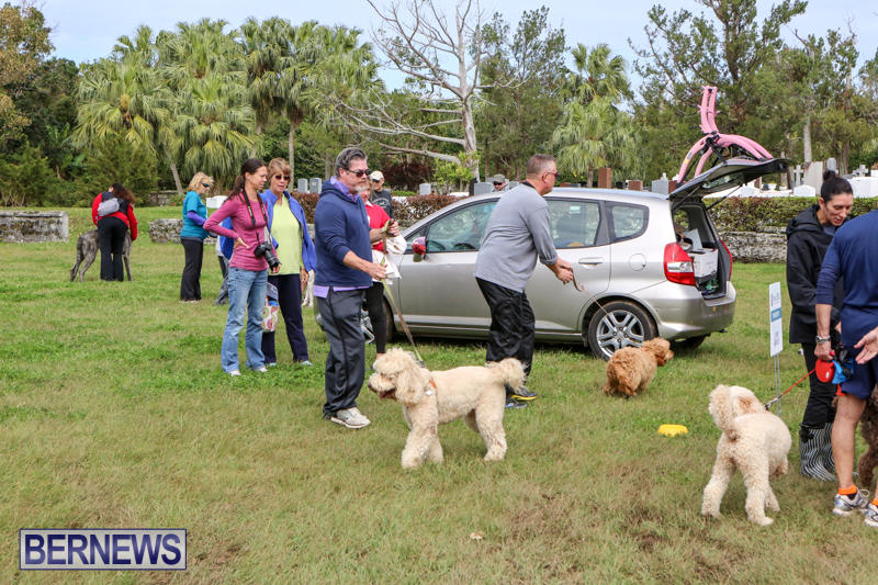 SPCA-Paws-To-The-Park-Bermuda-March-1-2015-74