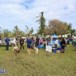 SPCA Paws To The Park Bermuda, March 1 2015-75