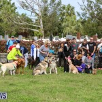 SPCA Paws To The Park Bermuda, March 1 2015-77