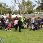 SPCA Paws To The Park Bermuda, March 1 2015-79
