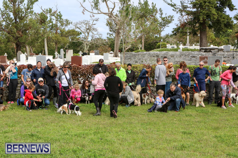 SPCA-Paws-To-The-Park-Bermuda-March-1-2015-79