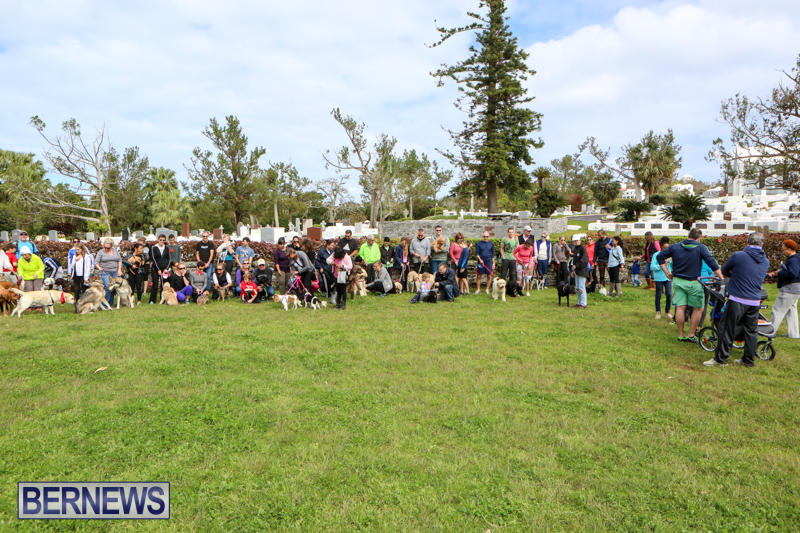 SPCA-Paws-To-The-Park-Bermuda-March-1-2015-82