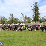 SPCA Paws To The Park Bermuda, March 1 2015-83