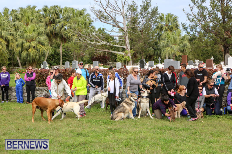 SPCA-Paws-To-The-Park-Bermuda-March-1-2015-84