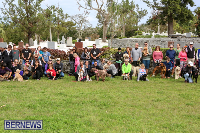 SPCA-Paws-To-The-Park-Bermuda-March-1-2015-86