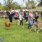 SPCA Paws To The Park Bermuda, March 1 2015-89