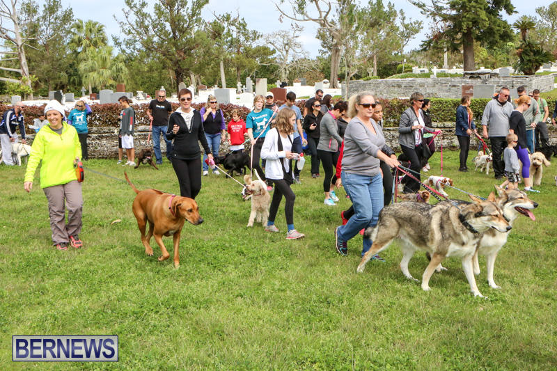 SPCA-Paws-To-The-Park-Bermuda-March-1-2015-89