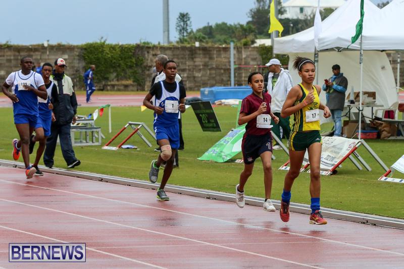 Telford-Magic-Mile-Bermuda-February-28-2015-1