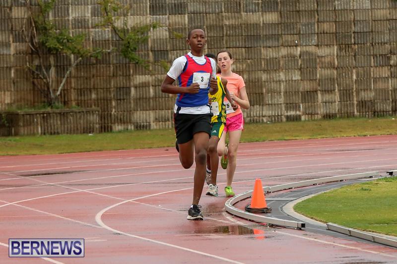Telford-Magic-Mile-Bermuda-February-28-2015-19