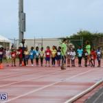 Telford Magic Mile Bermuda, February 28 2015-26