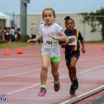 Telford Magic Mile Bermuda, February 28 2015-34