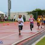 Telford Magic Mile Bermuda, February 28 2015-36