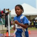 Telford Magic Mile Bermuda, February 28 2015-43