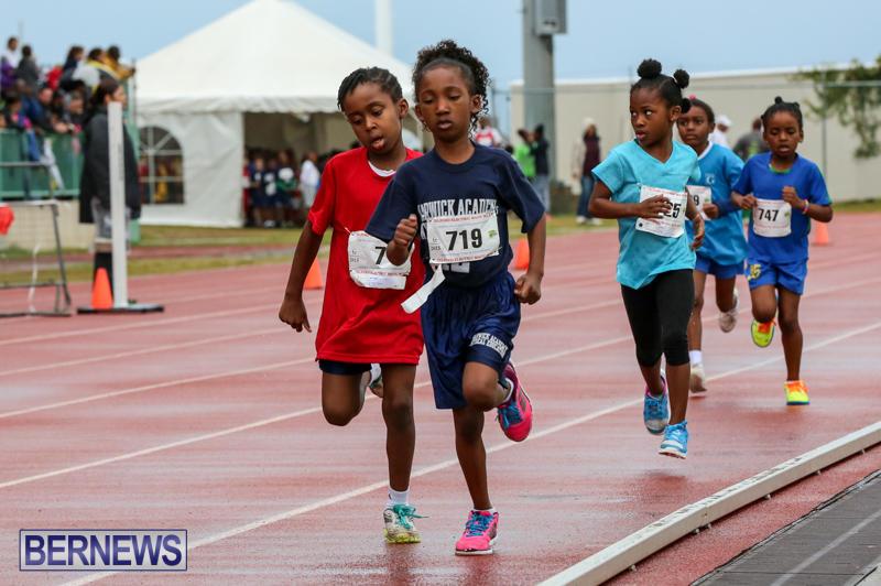 Telford-Magic-Mile-Bermuda-February-28-2015-46