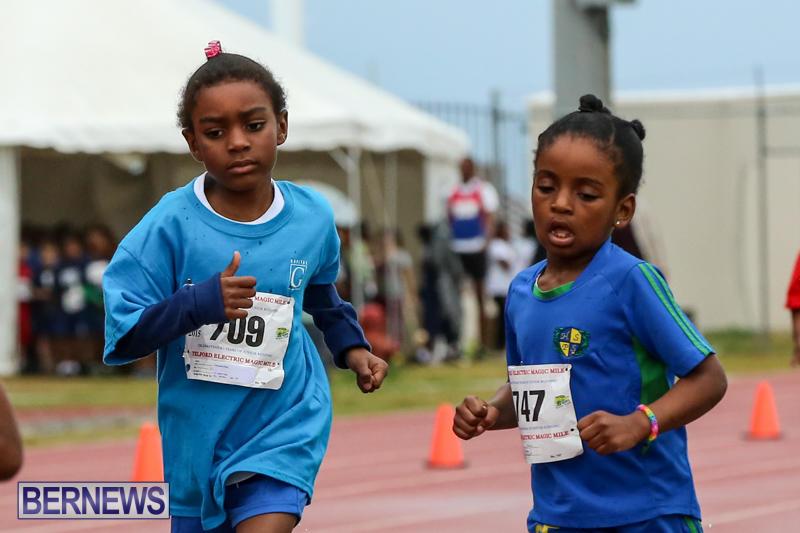 Telford-Magic-Mile-Bermuda-February-28-2015-48