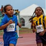 Telford Magic Mile Bermuda, February 28 2015-54