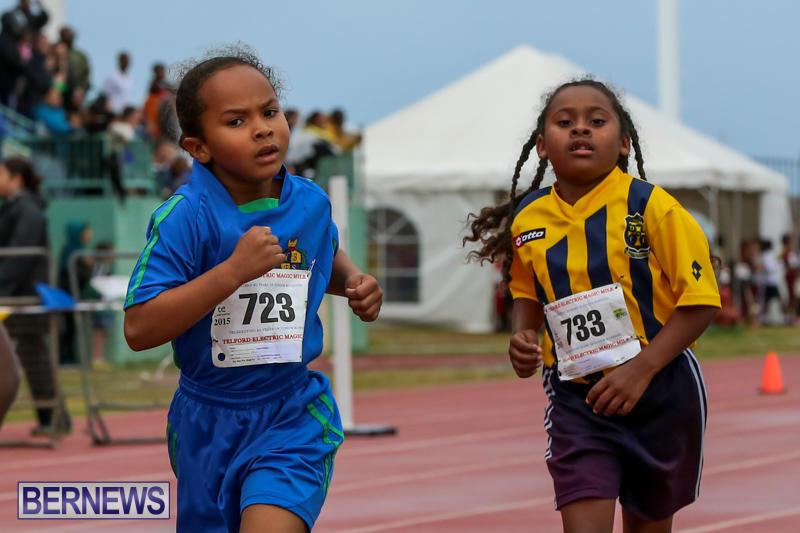 Telford-Magic-Mile-Bermuda-February-28-2015-54