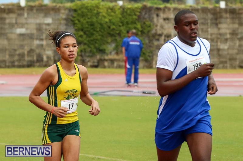Telford-Magic-Mile-Bermuda-February-28-2015-8