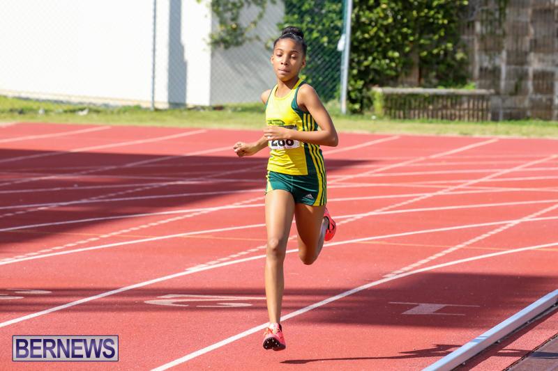 Track-Field-Meet-Bermuda-February-22-2015-129
