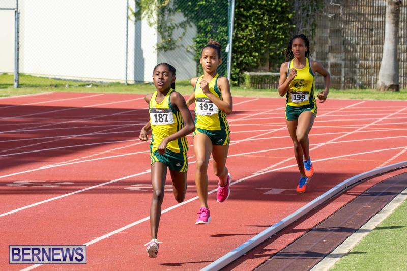 Track-Field-Meet-Bermuda-February-22-2015-136